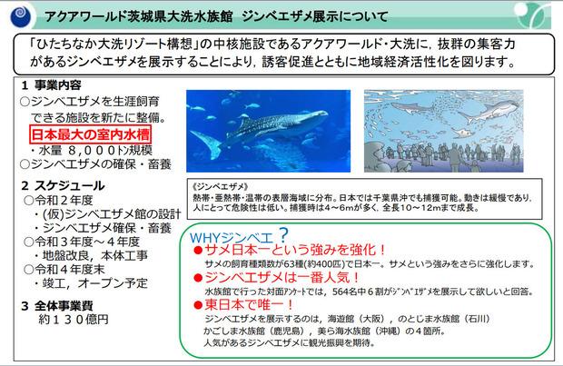 ジンベイザメの展示計画