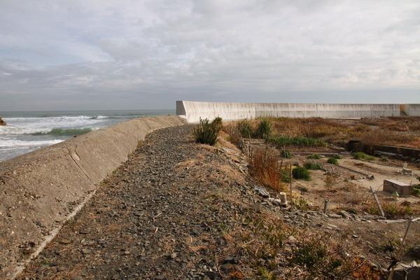 東連津川河口堤防改修予定箇所