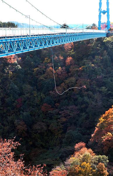 竜神大吊橋:バンジーテストジャンプ