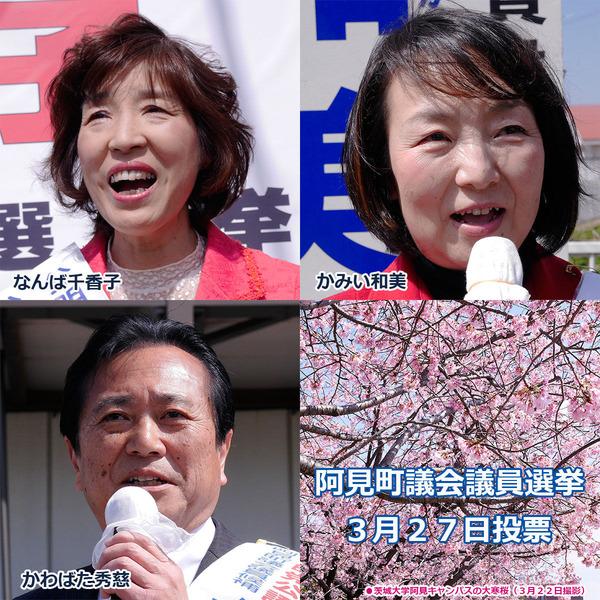 阿見町議会議員選挙
