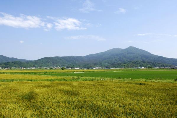 桜川市から見た筑波山