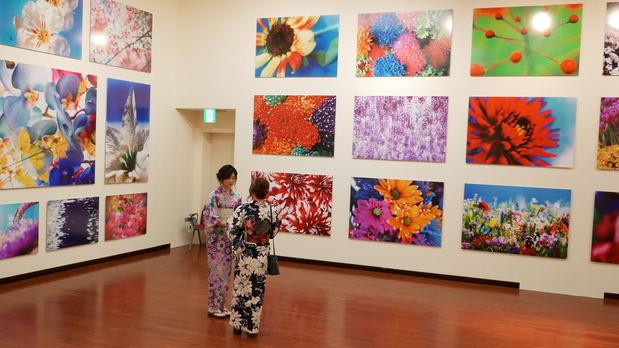 熊本現代美術館