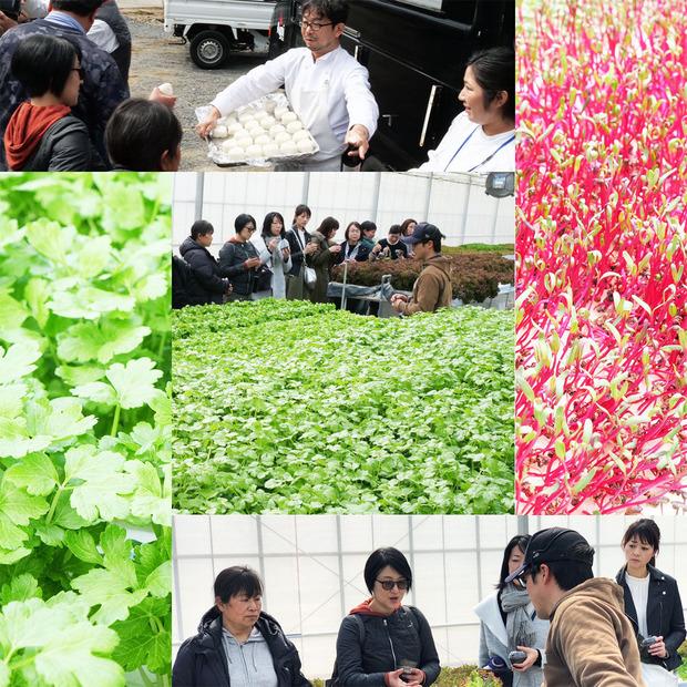 栗原農園/いばらき県北ガストロノミー