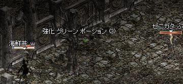20051027LinC0317.JPG