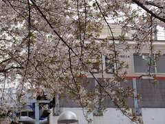34中目黒4_中目黒駅