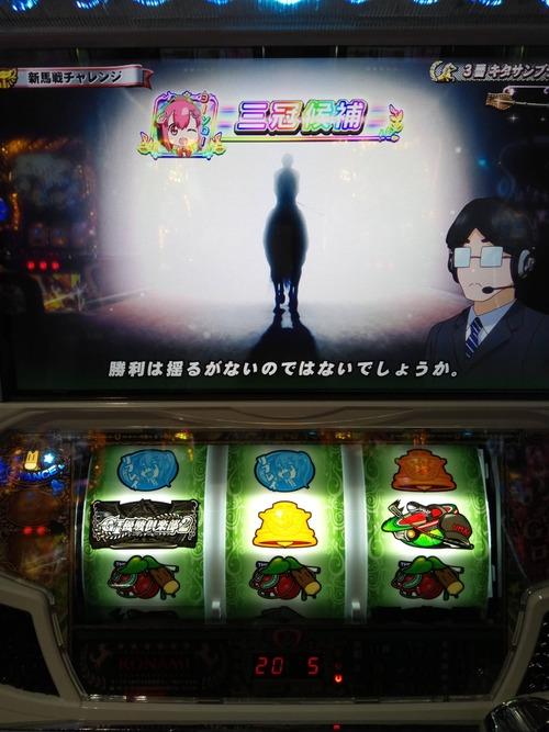 G1優駿倶楽部2まこまこ2の画像