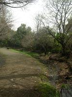 道保川公園入り口