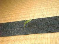 畳の間から笹の葉がにょきにょき出てきました