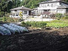 貸し菜園1-1