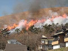 山焼き2009-1