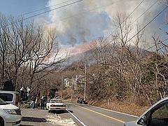 山焼き2009-2
