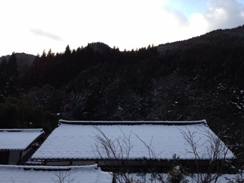 雲が畑 理想の森プロジェクト 前田木材