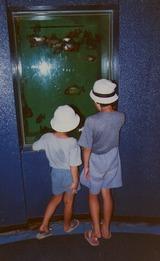 img047水族館 のコピー
