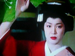 俳優メモ : 将軍家光忍び旅