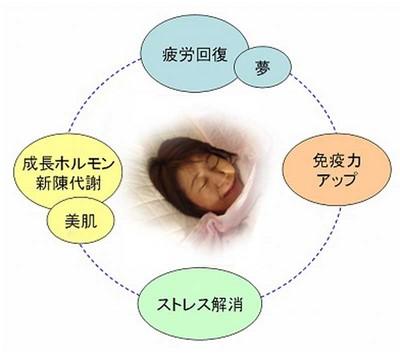 睡眠の説明