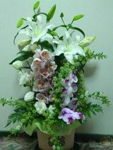 満中陰志の花