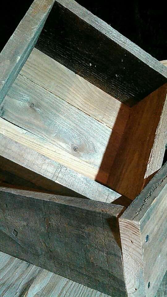 日本蜜蜂用