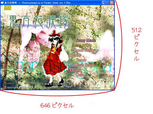 1310_sizer