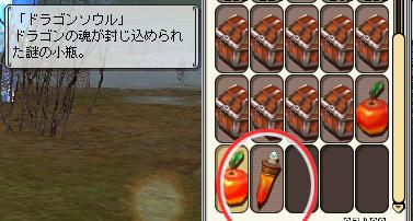 189_ドラゴンソウル
