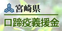 1500_miyazaki.jpg