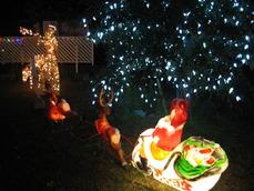 2010年クリスマスイルミネーション