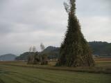 姶良ジャンボ鬼火焚き 2009年
