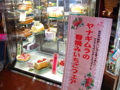 2011年ヤナギムラ春摘みいちごフェア