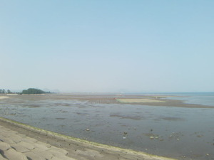 霧島錦江湾国立公園重富海岸か霧島市を望む