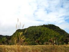 桜島サービスエリアから見える建昌城跡