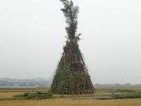 姶良町 ジャンボ鬼火焚き