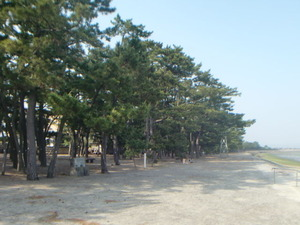 霧島錦江湾国立公園重富海岸砂防林