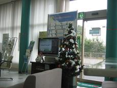 鹿児島相互信用金庫店内クリスマスツリー