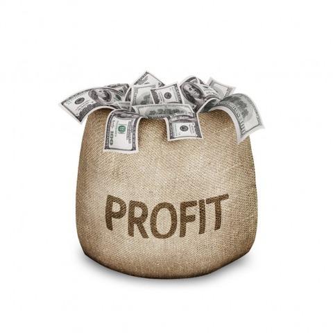 profit-550x550