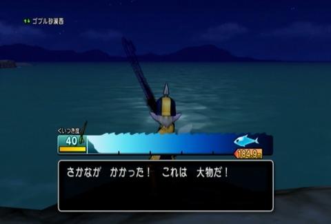 魚図鑑&ナポレオン01
