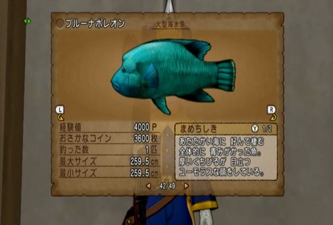 魚図鑑&ナポレオン06