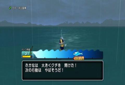 魚図鑑-オオシャコガイ05