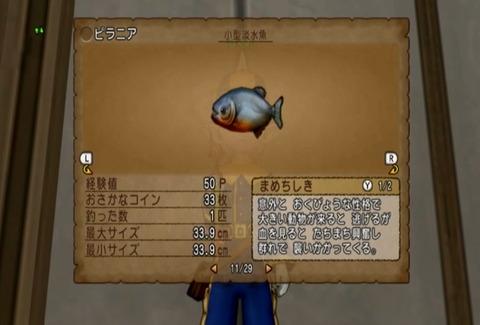 魚図鑑&ピラニア05