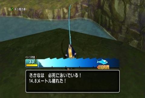 魚図鑑&パイク02