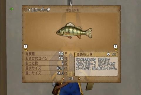魚図鑑&イエロー05