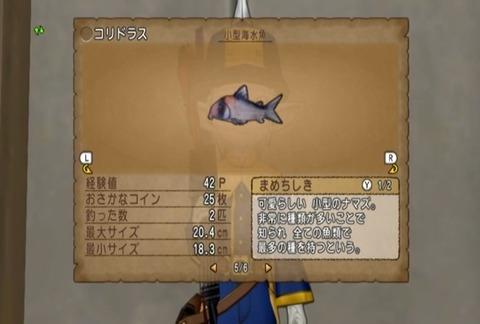 魚図鑑&コリドラス06