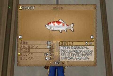 魚図鑑&ニシキゴイ05