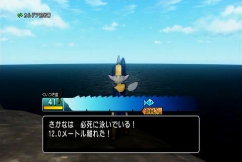 魚図鑑-メバル02