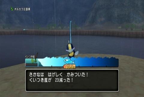 魚図鑑-ムベンガ04