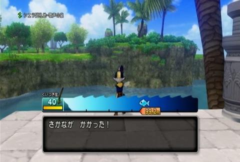 魚図鑑&タイ02
