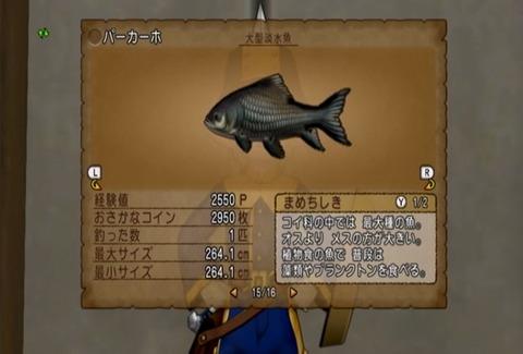 魚図鑑-パーカーホ07