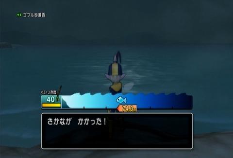 魚図鑑&ヒラメ02