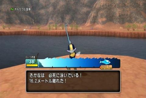 魚図鑑-ムベンガ03