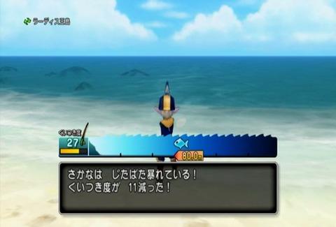 魚図鑑&カツオ03