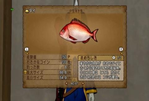 魚図鑑&タイ05