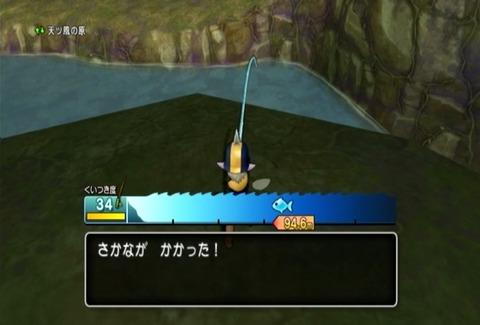 魚図鑑&イエロー01